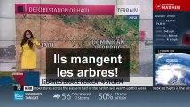 Cette présentatrice météo a bien énervé les Haïtiens