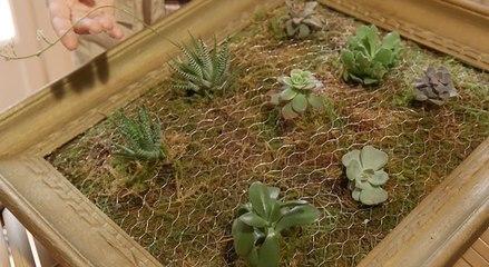 DIY : créez votre tableau végétal
