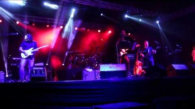 Concierto de rock de exintegrantes de Pink Floyd