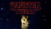Stranger Things avec des Hamsters