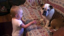 Baby Argues With Bulldog
