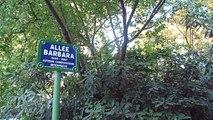 Square des Batignolles : Allée Barbara !