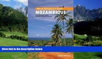 Big Deals  African Adventurer s Guide to Mozambique: Travelling All Major Routes and Gravel Tracks