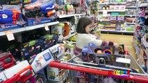 NERF TOY HUNT Nerf Toy Guns TOYS HUNT FAMILY FUN SHOPPING TRIP Zombie Strike Nerf Guns, Nerf Rebelle
