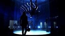 Superbes jeux de lumières par ces acrobates en chute libre - Lumières LED