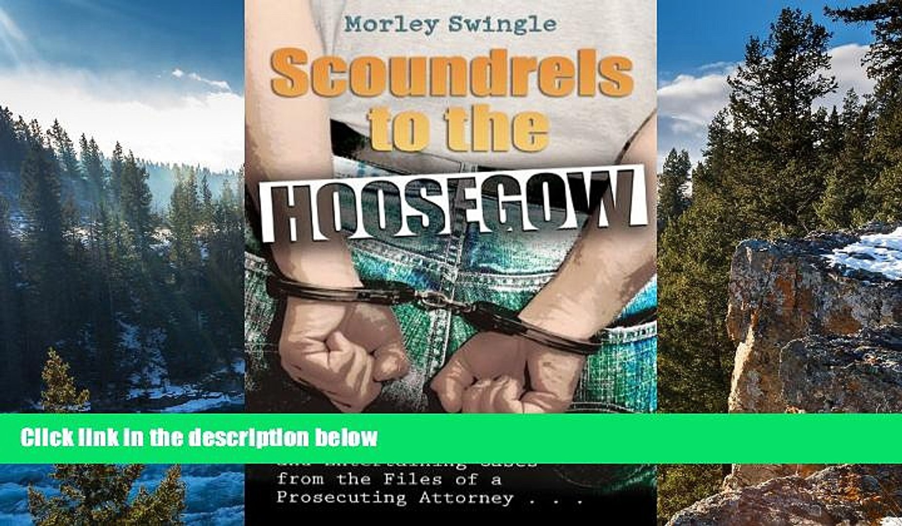Deals in Books  Scoundrels to the Hoosegow: Perry Mason Moments and Entertaining Cases from the