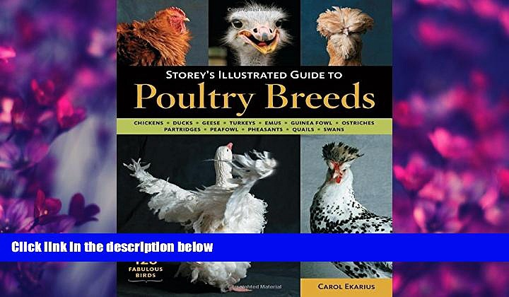 Popular Book Storey s Illustrated Guide to Poultry Breeds: Chickens, Ducks, Geese, Turkeys, Emus,