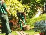 Arfi Paysage professionnels des espaces verts à votre service dans 94, le 77 et le 91