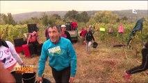 Roumanie : champs libres