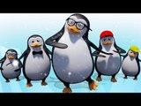 Five Little Penguins | Nursery Rhymes | 3D Baby Songs