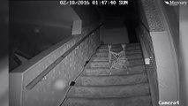 Ces chasseurs de fantômes ont une preuve de l'apparition d'un esprit... Flippant
