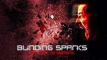 Blinding Sparks - Un Jour Je Signerai (Rock Version)