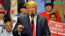 Donald Trump Causing Discomfort For Sexual Assault Victims