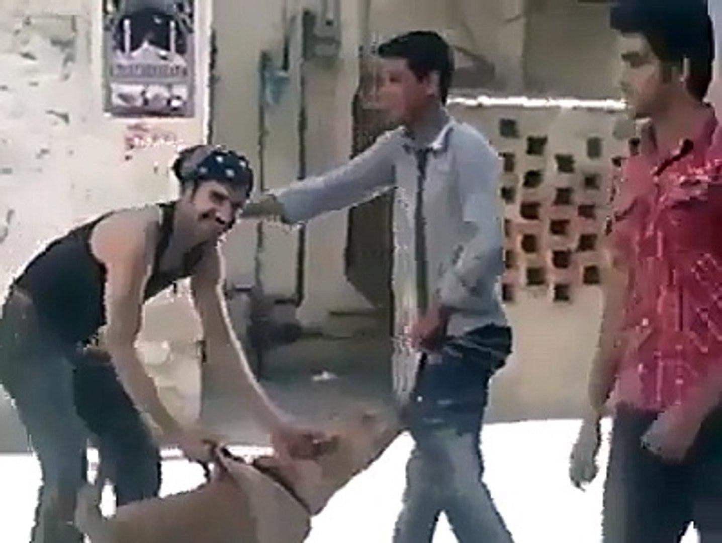 New Funny clip 2016, new funny dog 2016 , hahahahahahaha new punjabi 2016