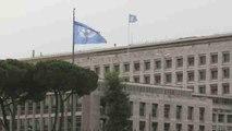 La FAO busca alternativas para garantizar la alimentación ante el cambio climático