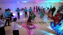 Program balcanic cu formatia Next Level Band din Iasi, Live la nunta. Program tiganesc interactiv, coregrafie nunta