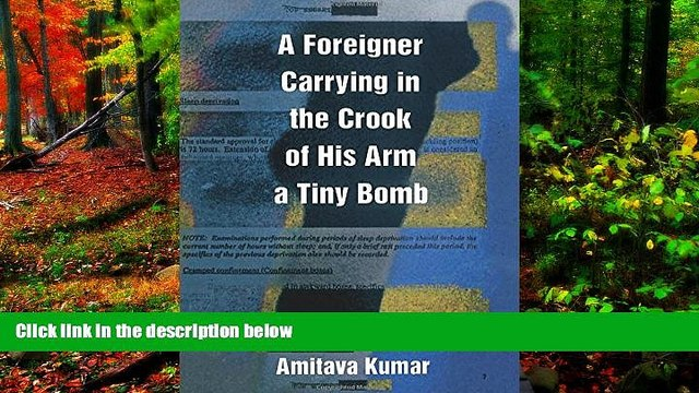 READ NOW  A Foreigner Carrying in the Crook of His Arm a Tiny Bomb  Premium Ebooks Online Ebooks