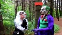 Spiderman _ Frozen Elsa vs Joker _ Black Cat! w_ Spidergirl Maleficent Bad Baby Hulk! Superhero Fun