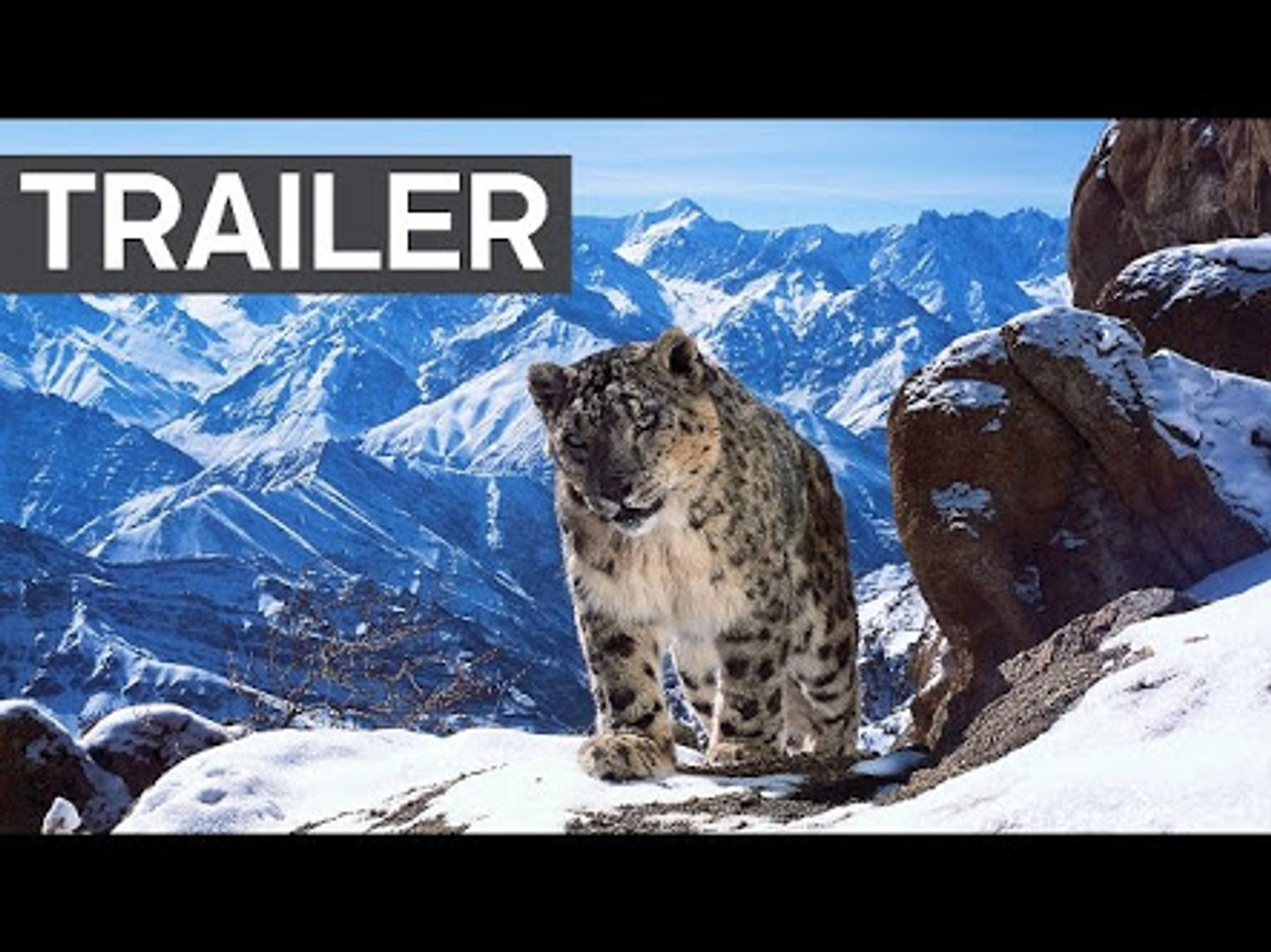 Planet Earth II- Official Extended Trailer - BBC Earth