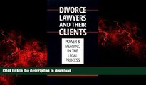 READ THE NEW BOOK Austin Sarat: Divorce Lawyers and Their Clients : Power and Meaning in the Legal