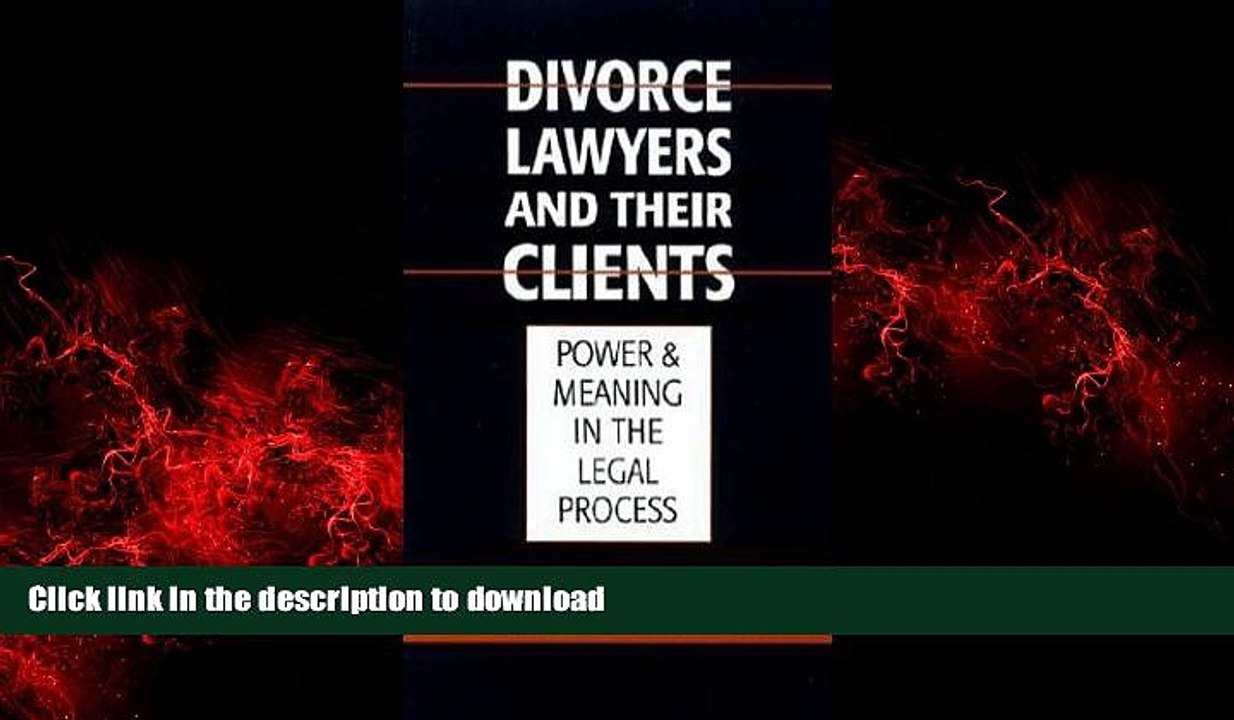 Divorce Lawyers and Their Clients: Power and Meaning in the Legal Process