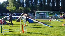 Concours Agility - Rieulay