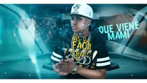 Casi Casi Video lyrics  Davis Flow