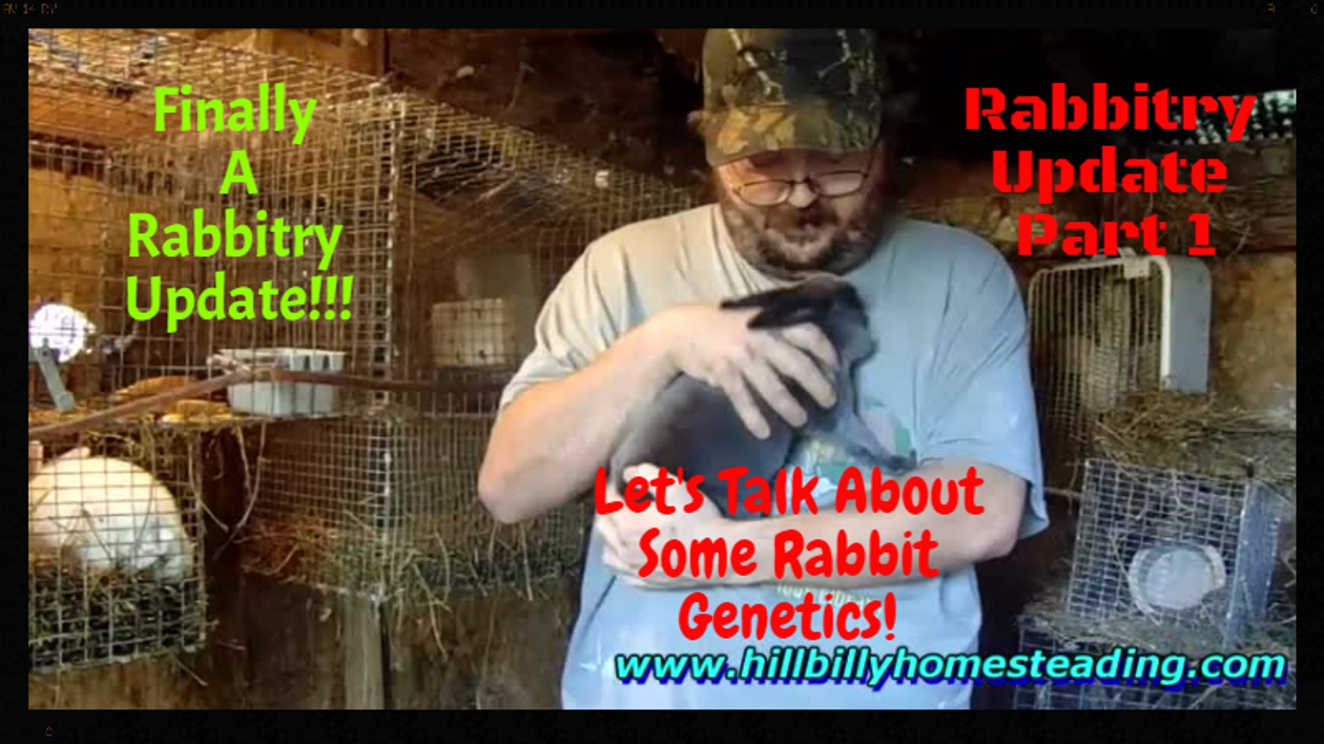 Rabbits - Overdue Rabbitry Update 10-9-2016 Baby Bunnies and Discussing Rabbit  Genetics!.mp4