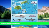 READ FULL  Fiji Map   Guide to Beqa Sharks Franko Maps Laminated Fish Card  READ Ebook Full Ebook