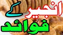 Anjeer Ke Faide In Urdu |Best Health Benefits of Figs (Anjeer) Urdu / Hindi
