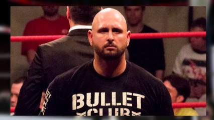 Karl Anderson Buried by Big Cass? James Ellsworth WWE Merchandise | Wrestling Report