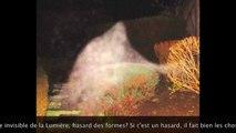 DANS LE SECRET DES SPECTRES ZOOMORPHES - BVI ReposterJ'aime RESEAUDESORBES par RESEAUDESORBESSuivre 51 157 vues  Infos Partager Ajouter à Photographies fascinantes prises par madame Christine Maloriol dans la région de Clermont-Ferrand. Vous y découvrirez