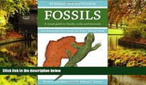Must Have  Formac Pocketguide to Fossils: Fossils, Rocks   Minerals in Nova Scotia, New Brunswick