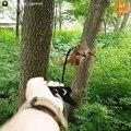 Ce gars a recueillit un écureuil et en a fait son animal de compagnie! Adorable