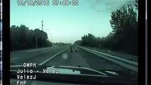 Un policier recueille un aigle d'amérique blessé au bord de la route