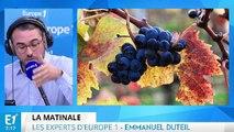 La production de vin, le cinquième anniversaire de la chute de Kadhafi en Libye : les experts d'Europe 1 vous informent