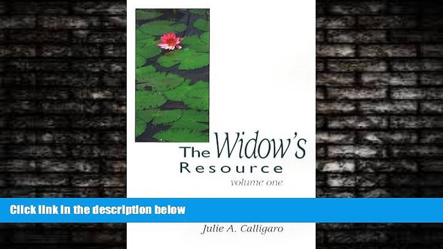 READ book  The Widow s Resource: Volume One How to Solve the Financial and Legal Problems That