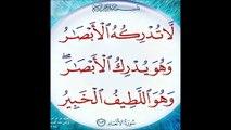 SURATS QURAN AL KUSAR 108 AL ANSR 110 IKHLAS 112 BY Abdul Rehman Sudais