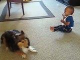 Ces parents filment leur bébé avec leur chien. Ce que ces deux-là font est surprenant !