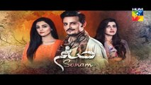 Sanam Episode 6 Full HD HUM TV Drama 17 October 2016(7)funny cat videos,funny pranks,funny,funny baby videos,ny animals,unny animal videos,funny accidents,funny auditions,funny ads,funny arab,funny arabic video,funny accident videos,funny animals compilat