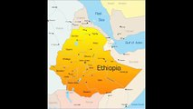 Ethiopian Comedy Kibebew Gedas Political Satire