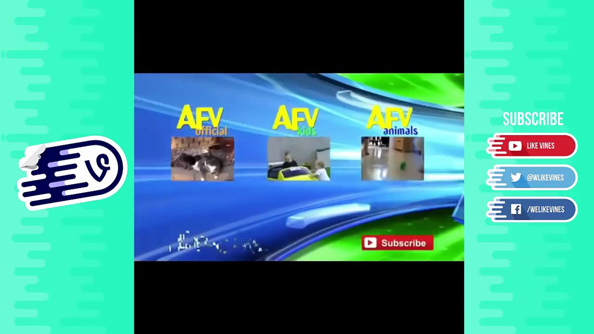 Funny Cute Cat Videos August (Part 1) 2016 - Cute Cats and Dogs Videos