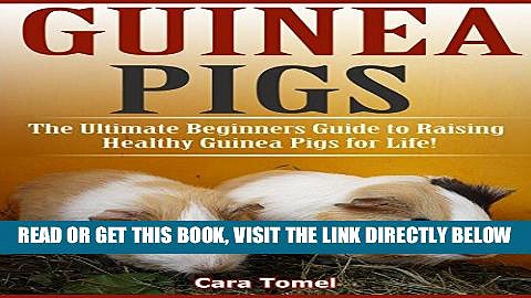 [EBOOK] DOWNLOAD Guinea Pigs: The Ultimate Beginner s Guide to Raising Healthy Guinea Pigs for