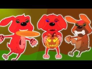 ห้าลูกสุนัขเล็ก ๆ น้อย ๆ   การ์ตูนสำหรับเด็ก   เนอสเซอรี่เพลง   เด็กสัมผัส   Five Little Puppies