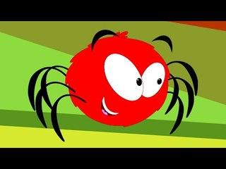 Incy Wincy Spider | Nursery Rhyme