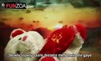 a Teady bear cute song - Mohabat me jany hum ny - awesome video