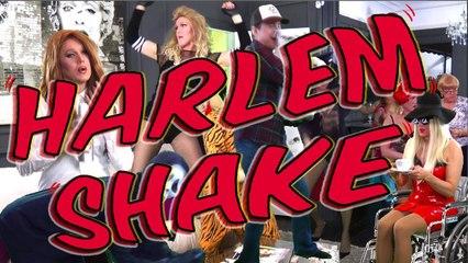 Harlem Shake ( Madonna, Gaga, Lana Del Rey, Cher, Rihanna, Katy Perry, Liza)
