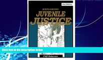 Big Deals  Exploring Juvenile Justice  Best Seller Books Most Wanted