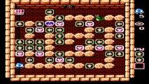 Adventures of Lolo Episode 13: Arrow Maze Hell