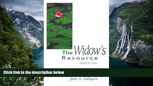 READ NOW  The Widow s Resource: Volume One How to Solve the Financial and Legal Problems That